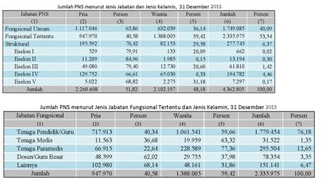 tabel 3 data PNS 2013