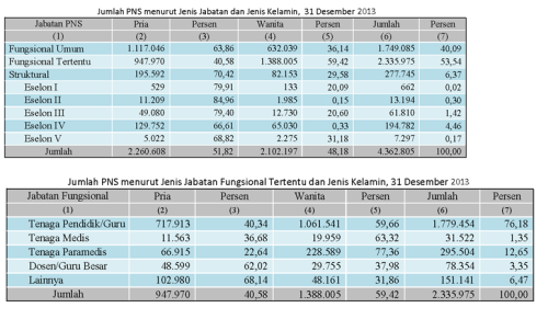 tabel 3 data PNS 2013