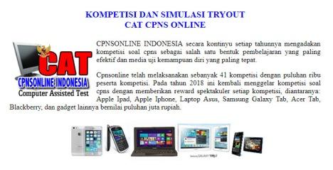 web CPNS online